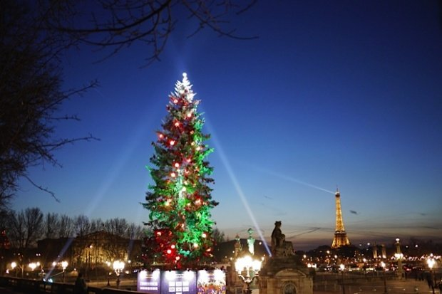 Christmas Tree Place De La Concorde Paris Colleen S Paris