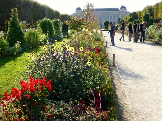 Animal, Insect Menageries and Blooms-Jardin des Plantes - Colleen's Paris